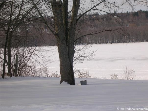 2005-02-13 Panorama 1